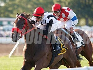 Teaks North wins the 2010 Restoration Stakes.