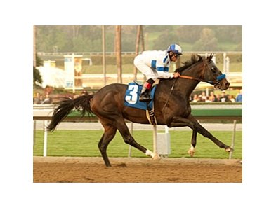 "Twirling Candy takes on Setsuko and 6 others in the Californian.<br><a target=""blank"" href=""http://www.bloodhorse.com/horse-racing/photo-store?ref=http%3A%2F%2Fpictopia.com%2Fperl%2Fgal%3Fprovider_id%3D368%26ptp_photo_id%3D9395258%26ref%3Dstory"">Order This Photo</a>"