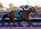 My Miss Aurelia in the Breeders' Cup Juvenile Fillies.