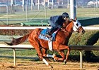 Groupie Doll breezed a half-mile in :48 1/5 at Churchill Downs Nov. 17.