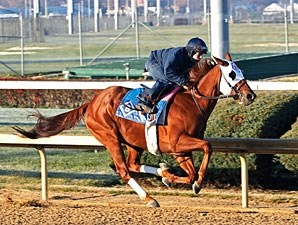 Groupie Doll - Churchill Downs, November 17, 2012.