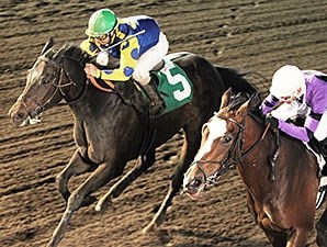 Speakfromyourheart wins the 2014 10,000 Lakes Stakes.