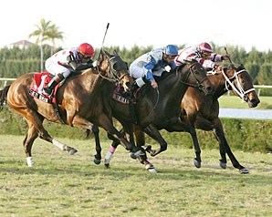 Rutherienne (blue silks), shown winning the Frances Genter (gr. IIIT) at Calder last December.