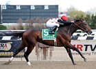 To Honor and Serve begins his 2012 season in the Westchester at Belmont Park.