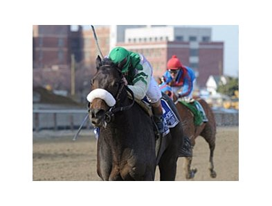 "J J's Lucky Train is scheduled to run in the Haskell.<br><a target=""blank"" href=""http://www.bloodhorse.com/horse-racing/photo-store?ref=http%3A%2F%2Fpictopia.com%2Fperl%2Fgal%3Fprovider_id%3D368%26ptp_photo_id%3D9488428%26ref%3Dstory"">Order This Photo</a>"