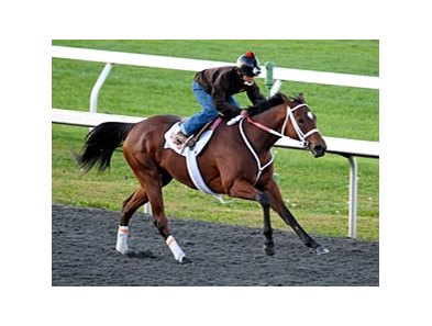 Havre de Grace worked 5 furlongs Oct. 24 at Keeneland.
