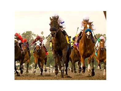 Magnum (center) pulls away from Well Armed at the finish of the San Antonio.
