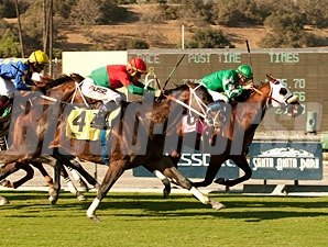 Chips All In wins the 2013 Eddie D.