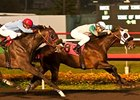 Weewinnin tries two turns in the California Breeders Champion Stakes.