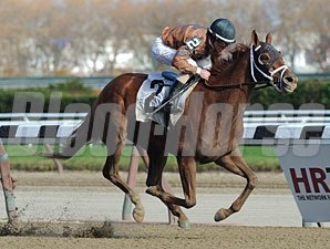 Sunny Desert wins the 2012 Staten Island Division of the NY Stallion Series.