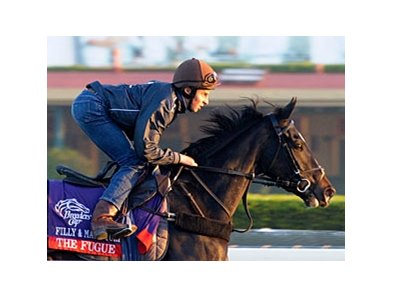 "The Fugue at Santa Anita on October 31.<br><a target=""blank"" href=""http://photos.bloodhorse.com/BreedersCup/2012-Breeders-Cup/Works/26130247_gxH6nS#!i=2187030026&k=TwF2tmc"">Order This Photo</a>"