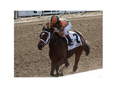 Fair Grounds Oaks winner Proud Spell is the narrow choice in Pool 3 of Churchill Downs' 2008 Kentucky Oaks Future Wager.