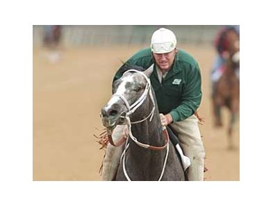 Old Fashioned, shown at Oaklawn with trainer Larry Jones aboard, is the Derby Future Wager morning line co-favorite at 8-1.