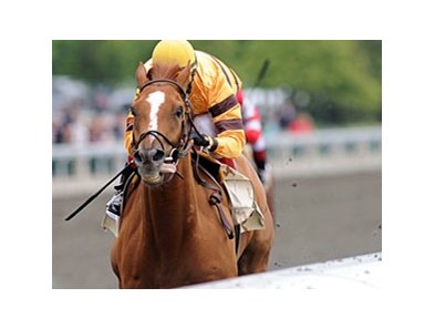 Wise Dan won the April 22 Ben Ali Stakes at Keeneland by 10 1/2 lengths in track record time.