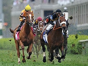 Wise Dan running in the Woodford Reserve at Churchill Downs.