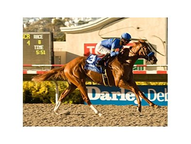 "Darley Debutante winner Tell a Kelly faces Alienation in the Oak Leaf Stakes.<br><a target=""blank"" href=""http://www.bloodhorse.com/horse-racing/photo-store?ref=http%3A%2F%2Fpictopia.com%2Fperl%2Fgal%3Fprovider_id%3D368%26ptp_photo_id%3D9170883%26ref%3Dstory"">Order This Photo</a>"