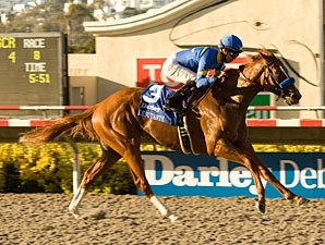 Tell a Kelly wins the Darley Debutante.
