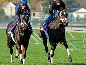 Stopshoppingmarie (left) and Sweet Cat, Churchill Downs Oct 29, 2011