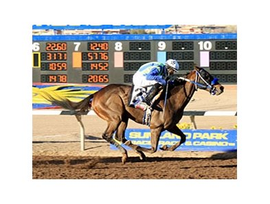 Isn't He Clever won the Borderland Derby on February 25.