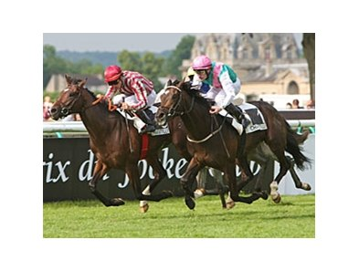 Vision d'Etat (left) remained undefeated with a determined head victory over Famous Name in the Prix du Jockey-Club.
