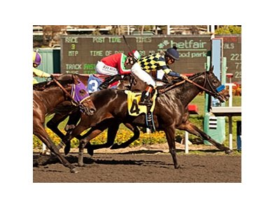 Carving gets up late to win the Real Quiet Stakes at Betfair Hollywood Park Nov. 10.