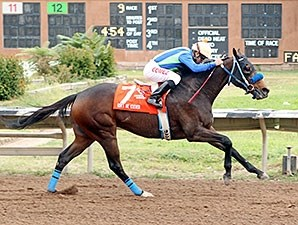 Isn't He Clever wins the Downs at Albuquerque Handicap.