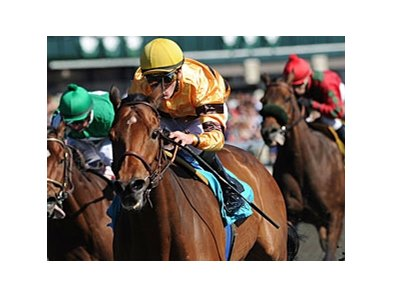 "Successful Dan<br><a target=""blank"" href=""http://photos.bloodhorse.com/AtTheRaces-1/at-the-races-2012/22274956_jFd5jM#!i=1782652995&k=sqb4x5G"">Order This Photo</a>"