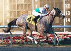 Informed Decision Handles Two-Turn Mile
