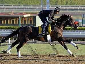 Richard's Kid at Santa Anita 10/29/2012.