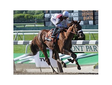 "Fly Down<br><a target=""blank"" href=""http://www.bloodhorse.com/horse-racing/photo-store?ref=http%3A%2F%2Fpictopia.com%2Fperl%2Fgal%3Fprovider_id%3D368%26ptp_photo_id%3D8950311%26ref%3Dstory"">Order This Photo</a>"