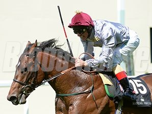 The Wow Signal wins the 2014 Coventry Stakes