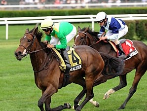 Mystical Star wins the 2012 New York Stakes.