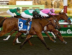 Exit Stage Left wins the 2013 Golden Nugget Stakes.