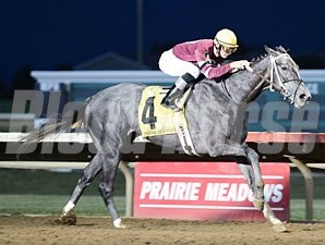 Tapajo wins the 2012 Panthers Stakes.