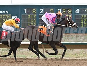 Lookingoodinatux wins the 2013 Silver Cup Futurity.