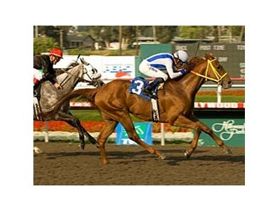 Street Boss sets a Hollywood Park six furlong track record while winning the Los Angeles Handicap (gr. III) on May 10.