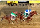Chad Harmon's photo of Shackleford defeating Animal Kingdom in the 2011 Preakness Stakes.