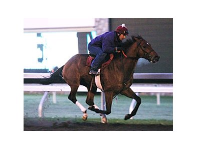 Caleb's Posse worked six furlongs in 1:13 1/5 at Keeneland on Oct 22.