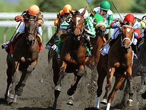 Biofuel wins the 2010 La Lorgnette.
