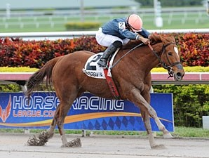 Golden Mystery wins the Florida Sunshine Millions Filly and Mare Sprint.