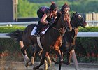 Orb on the Belmont track.