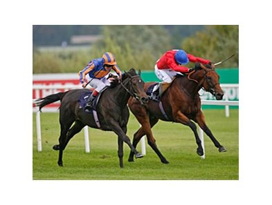 "Lillie Langtry (left) runs down Spacious to win the Coolmore Fusaichi Pegasus Matron Stakes. <br><a target=""blank"" href=""http://www.bloodhorse.com/horse-racing/photo-store?ref=http%3A%2F%2Fpictopia.com%2Fperl%2Fgal%3Fprovider_id%3D368%26ptp_photo_id%3D9170276%26ref%3Dstory"">Order This Photo</a>"