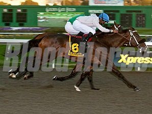 Passing Game wins the 2011 Gold Nugget.