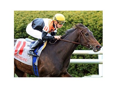 Marketing is the 5-2 morning line favorite for her 2013 debut in the Churchill Distaff Turf Mile.
