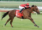 Rahystrada Tops Kentucky Cup Turf Field
