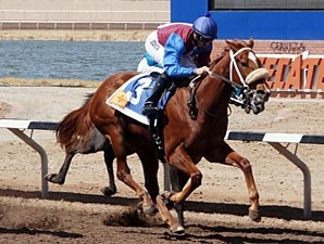 Lady Genius wins the 2013 Copper Top Futurity Trial Fillies 1st Division.