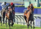 "Little Mike leads the way in the Breeders' Cup Turf.<br><a target=""blank"" href=""http://photos.bloodhorse.com/BreedersCup/2012-Breeders-Cup/Turf/26130116_ZC6sF3#!i=2192999449&k=CvcbhQf"">Order This Photo</a>"