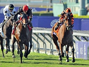 Little Mike wins the 2012 Breeders' Cup Turf.