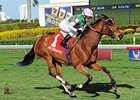 Starformer won The Very One Stakes by 3 3/4 lengths on Feb 16.