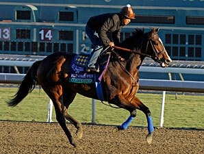 Contested Returns to Track Nov. 1